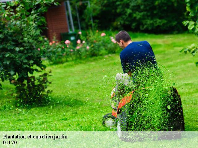 Plantation et entretien de jardin à Crozet tél: 04.84.43.07.65