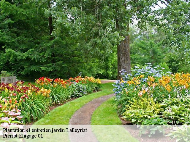 Plantation et entretien de jardin à Lalleyriat tél: 04.84.43.07.65
